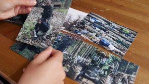 Białowieża: fotografie della lotta degli attivisti contro la deforestazione