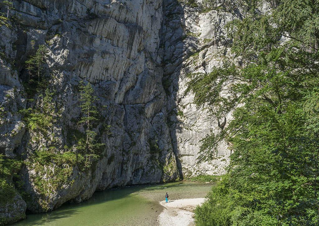 Austria: parete di roccia nella valle dello Schwarza