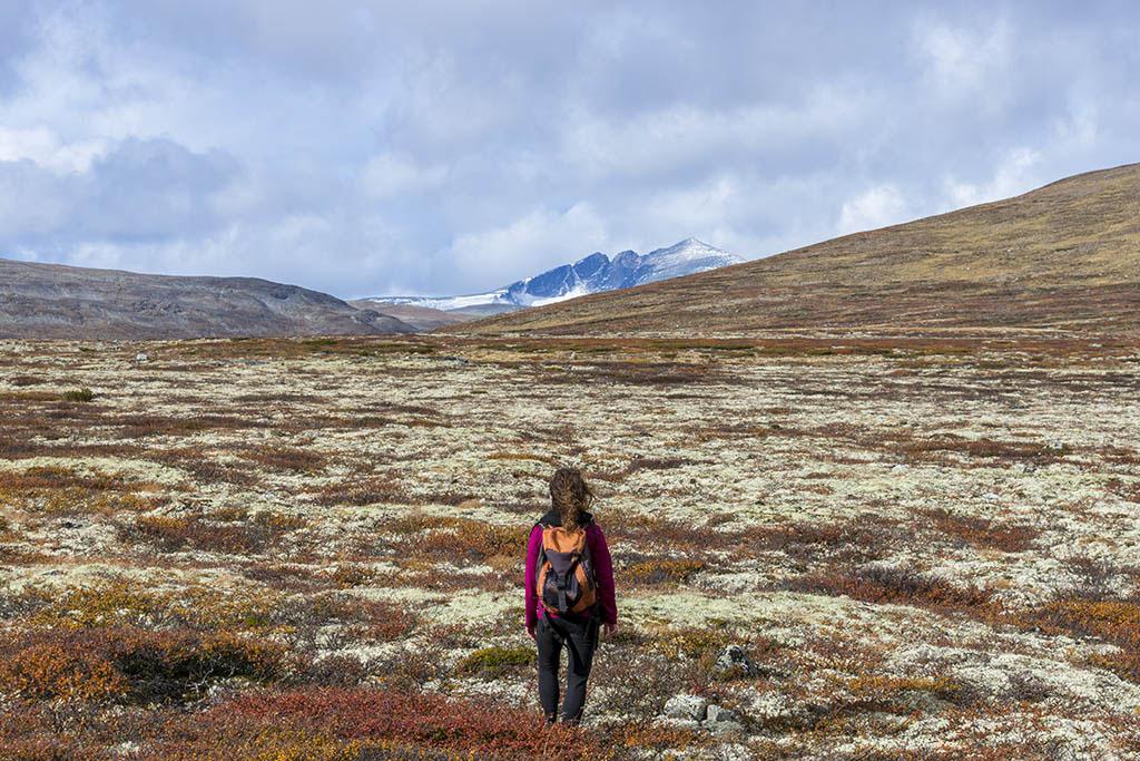 chiara cammina parco dovrefjell in autunno