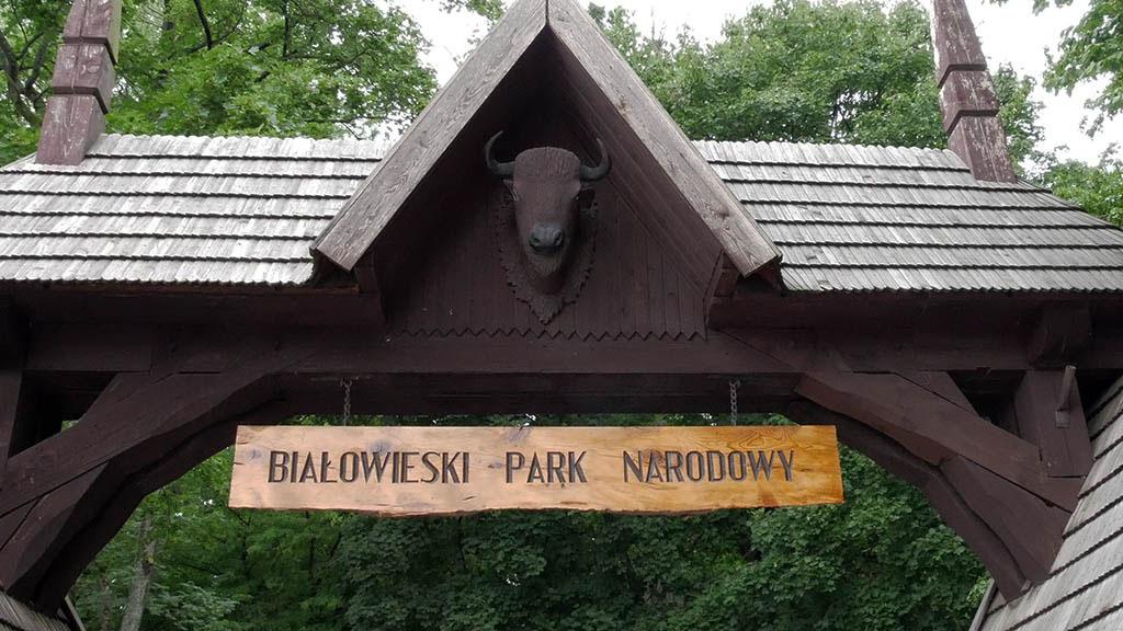 Białowieża: ingresso del parco