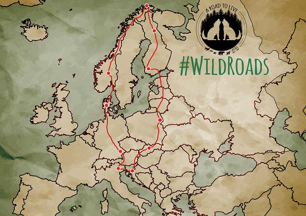 Mappa dell'europa stilizzata con il percorso di WildRoads