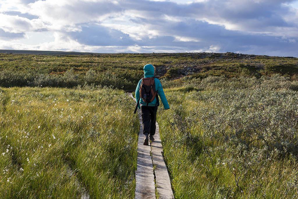 Passerelle lungo il sentiero del Canyon di Alta