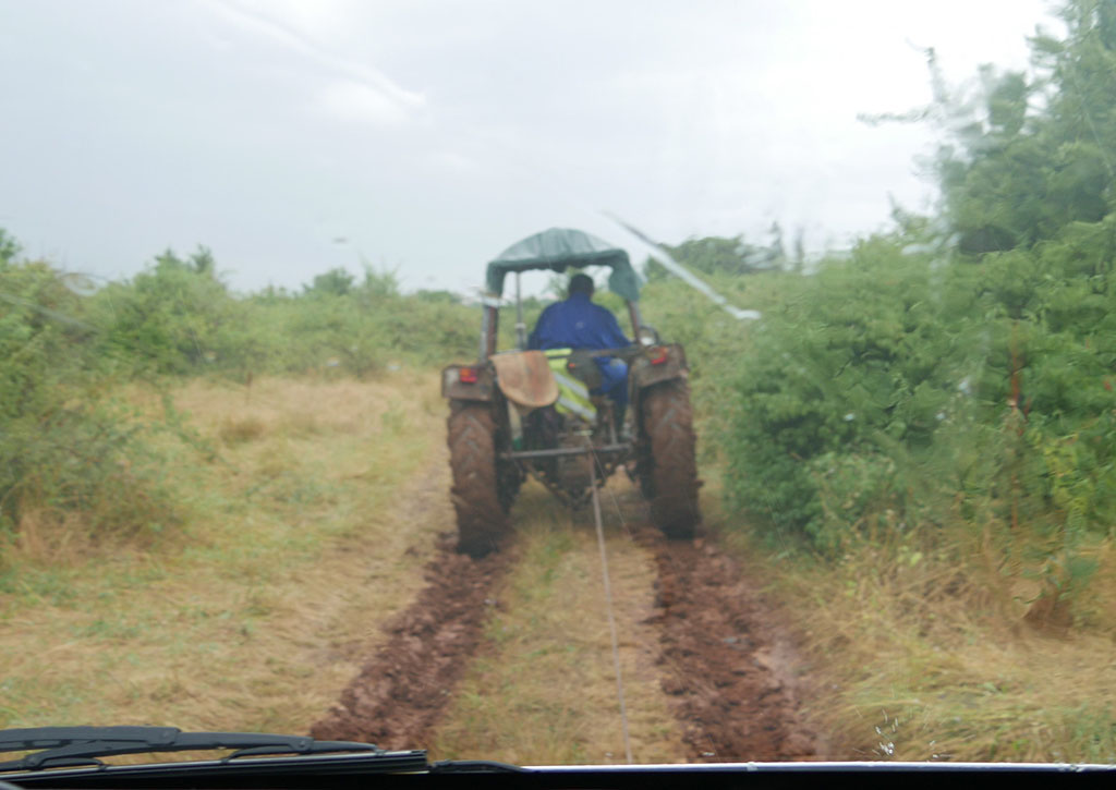 WildRoads: Trainati da un trattore in Croazia